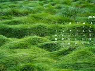 2017年3月日历绿色小清新草地壁纸