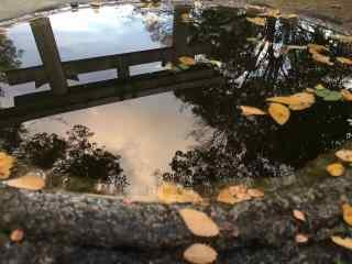 奈良创意古井景中投影高清桌面壁纸