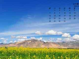 2017年5月清新草原与蓝天日历壁纸