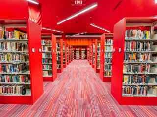鲜艳的图书馆设计