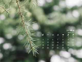 2017年6月日历绿色松叶桌面壁纸
