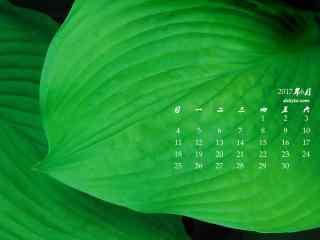 2017年6月日历绿色护眼桌面壁纸