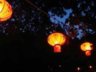 夜幕中花式灯笼图片