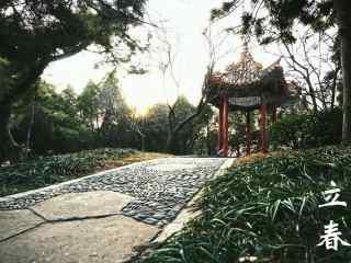立春节气壁纸之庭院深深