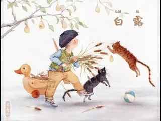 2017白露节气之小男孩壁纸