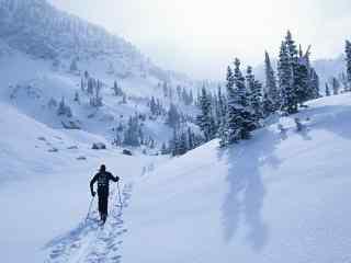 滑雪运动高清壁纸