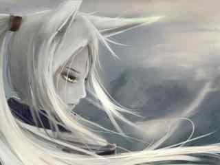 阴阳师白狼唯美手
