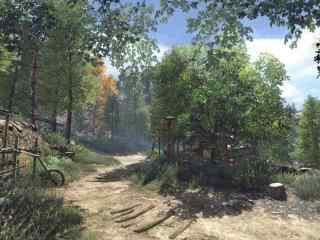 逆水寒林间小路游戏图片