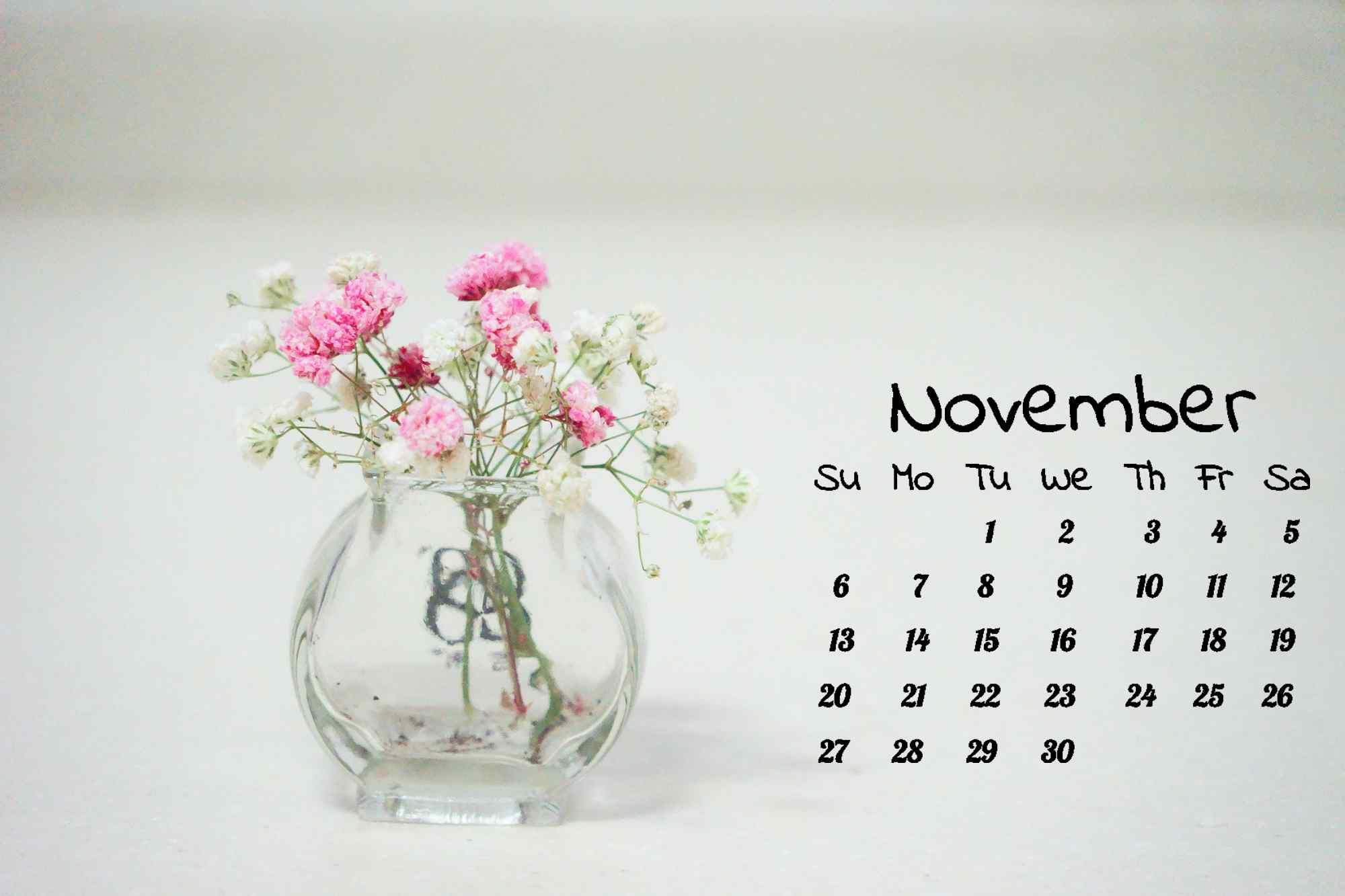 小清新简约白色满天星11月日历壁纸