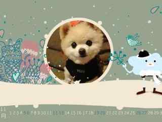 呆萌可爱的俊介狗狗11月日历壁纸