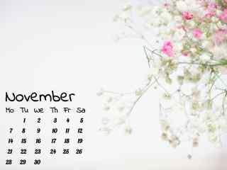 2016年11月日历壁纸之唯美的满天星花
