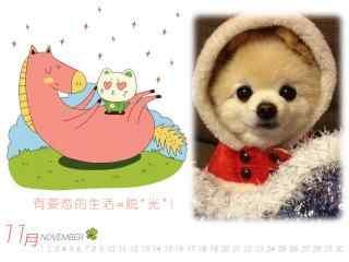 可爱甜美的俊介狗狗11月日历壁纸