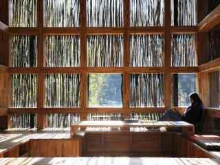 北京最文艺的图书馆女孩看书图片壁纸