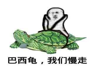 巴西龟我们慢走表情包