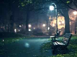 唯美浪漫的公园夜