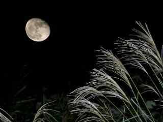 炫酷月亮风景图片