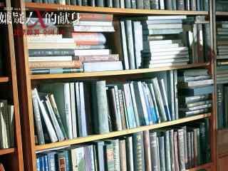 嫌疑人X的献身书柜剧照图片
