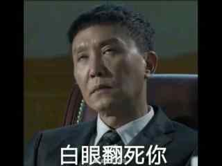 人民的名义李达康吴刚搞笑表情包