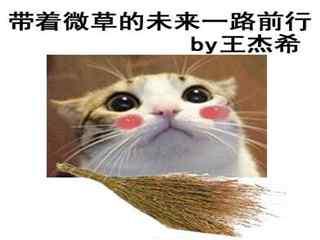 全职高手王杰希可爱表情包