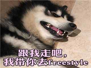 马达freestyle表情包图片