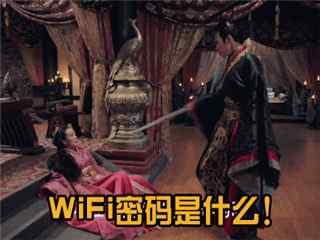 张彬彬微信表情包之WiFi密码
