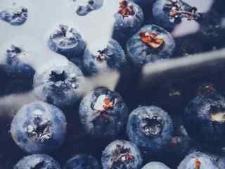 水中的蓝莓桌面壁纸