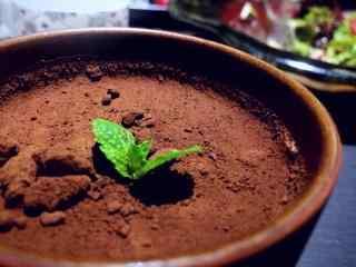 可爱小盆栽提拉米