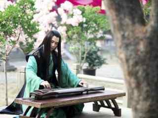 兰陵王妃剧照宇文邕弹奏古琴桌面壁纸