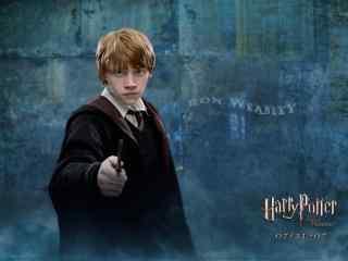 哈利波特电影善良呆萌罗恩高清桌面壁纸