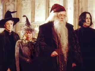 哈利波特魔法学院魔法老师影视壁纸