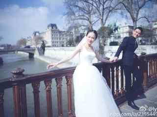放弃我,抓紧我剧照厉薇薇和陈亦度婚纱桌面壁纸