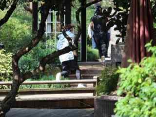 综艺节目看你往哪跑杭州站徐海乔和张继科抓捕红队桌面壁纸