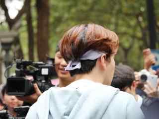 综艺节目看你往哪跑杭州站徐海乔毛茸茸的脑袋桌面壁纸
