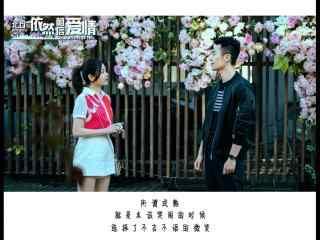 《北上广依然相信爱情》文艺文字海报图片