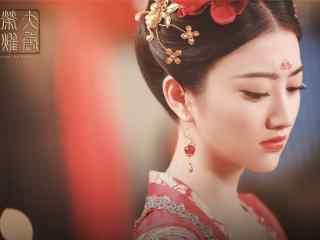 《大唐荣耀》沈珍珠大婚剧照图片