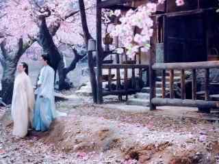 三生三世十里桃花白真折颜图片