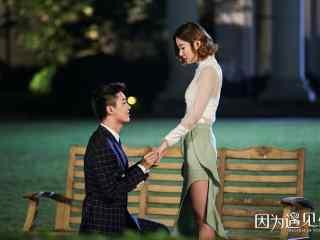 因为遇见你李云哲求婚张雨欣剧照
