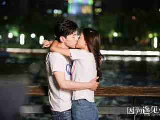 因为遇见你开心果夫妇接吻壁纸