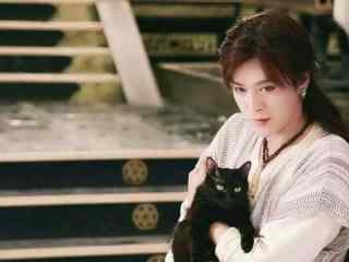 热血长安徐海乔与猫剧照壁纸