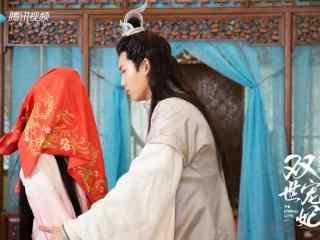 双世宠妃坦诚夫妇夫妻对拜剧照