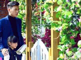 我们的爱靳东王芷璇桌面壁纸