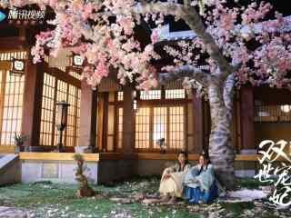 双世宠妃坦诚夫妇树下相拥壁纸