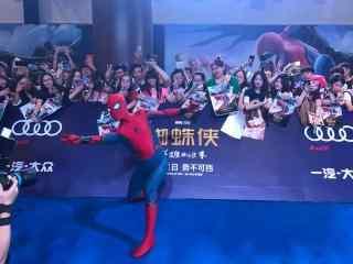 电影蜘蛛侠英雄归来帅气蜘蛛侠图片