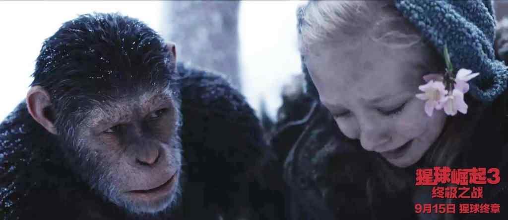 电影猩球崛起3诺瓦桌面壁纸
