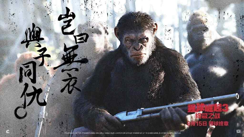 电影猩球崛起3终极之战桌面图片