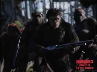 电影猩球崛起3终极之战帅气剧照