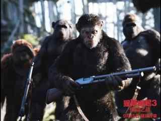 电影猩球崛起3拿枪的凯撒剧照