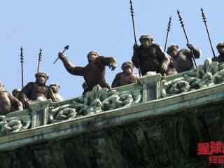 电影猩球崛起3猩猩进攻剧照壁纸