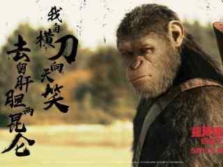 电影猩球崛起3终极之战海报壁纸