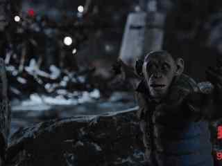 电影猩球崛起3凯撒剧照壁纸